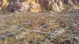 Peru 150t/d heap leaching of gold project